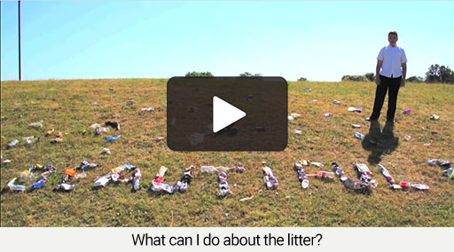 What can I do about the litter?